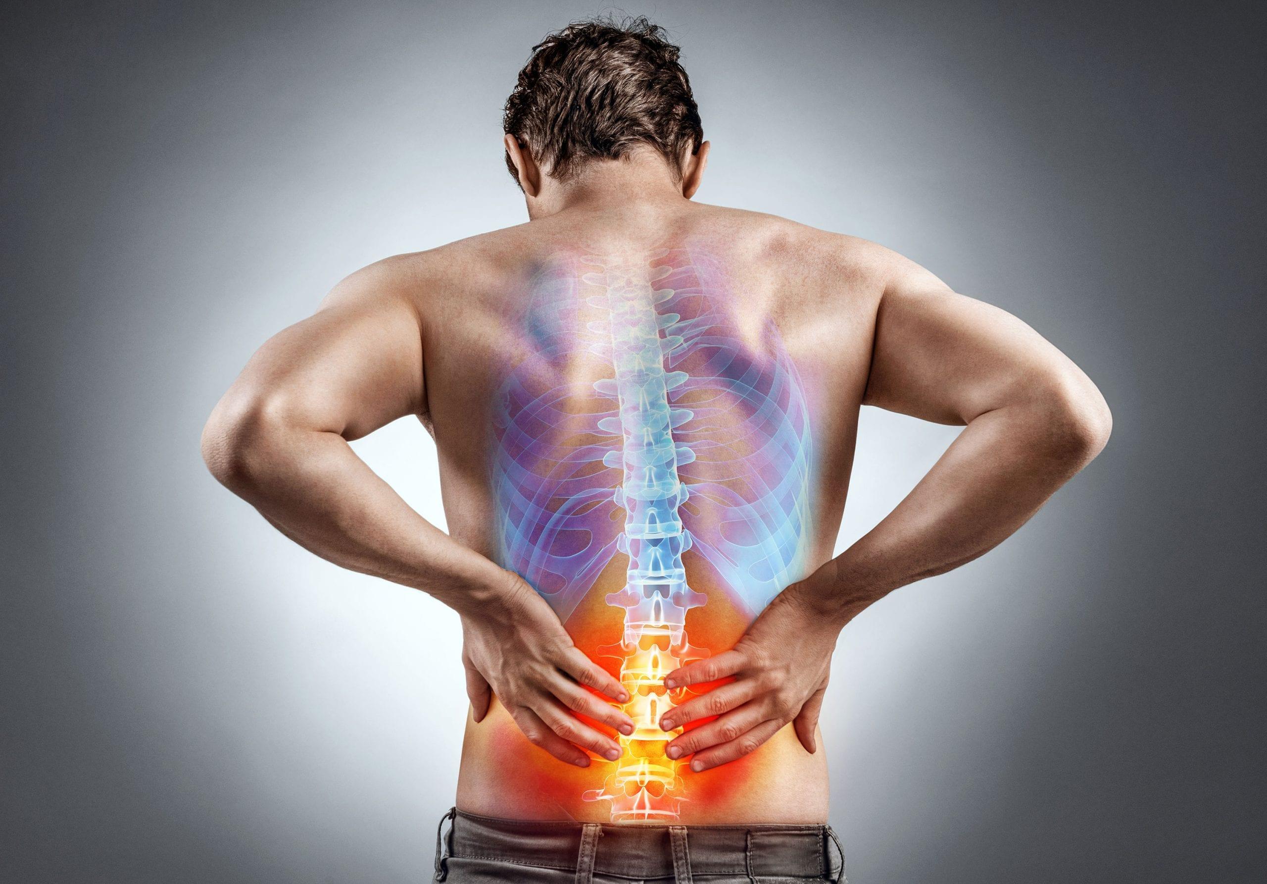bol u donjim leđima